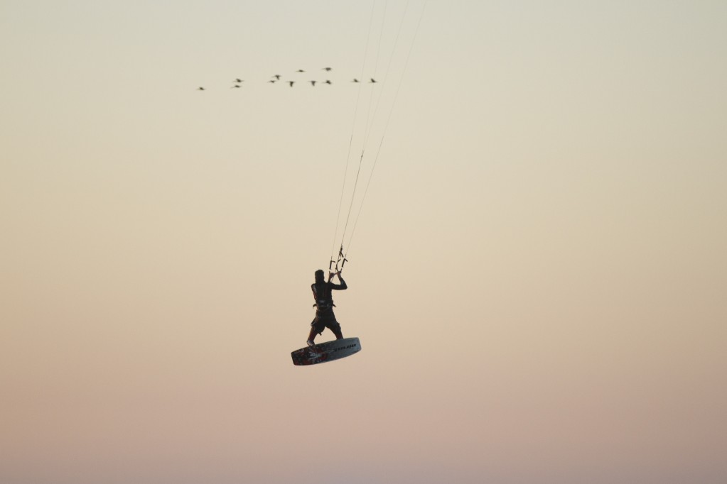 Stuart Barnes - Big Bay, Little Birds, Puppetry and Kitesurfing...